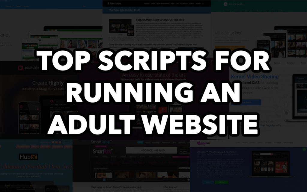 We've researched all popular scripts on the market and found the best ones to let you make the right choice. Still curious which adult website script to take? Read our new article and get your answer.