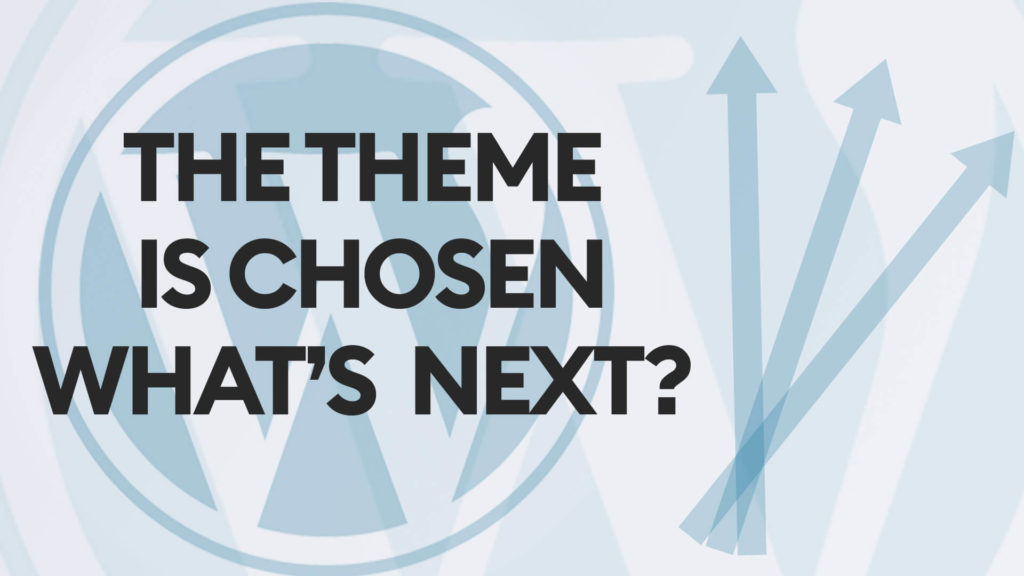 Choosing a WordPress theme is just a first step in the adult business. After setting the theme up, customizing it, and attracting the traffic you need to think of a way to monetize the website and maximize your revenues.