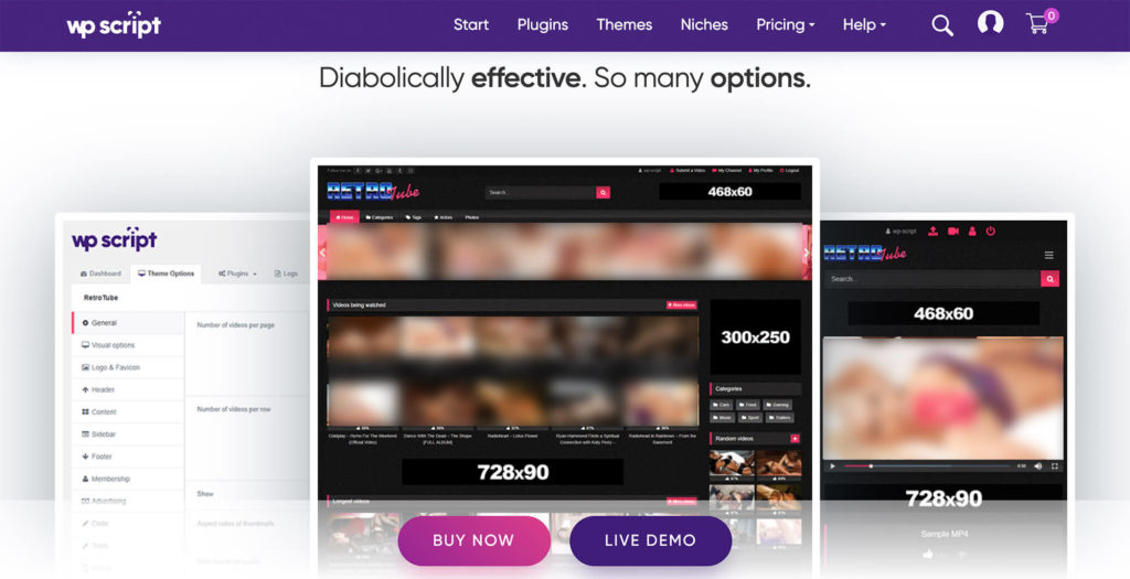 The name speaks for itself: RetroTube stands out for its retro vibe of dark interface with the popping pink. It is considered to be one of the most effective themes on WordPress.
