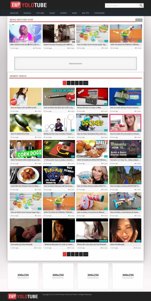 YoloTube like ZingTube builds its work on a quick loading and high Google rankings. This is an ideal choice for beginner websites that tend to work without any fuss.